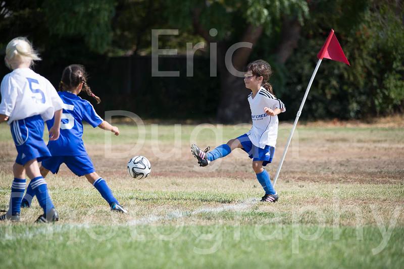 Phoenix vs Cheetah Soccer-3