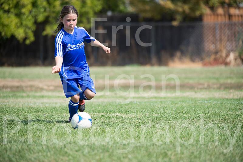 Phoenix vs Cheetah Soccer-160