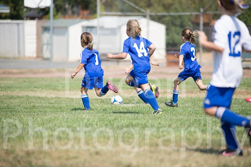 Phoenix vs Cheetah Soccer-133