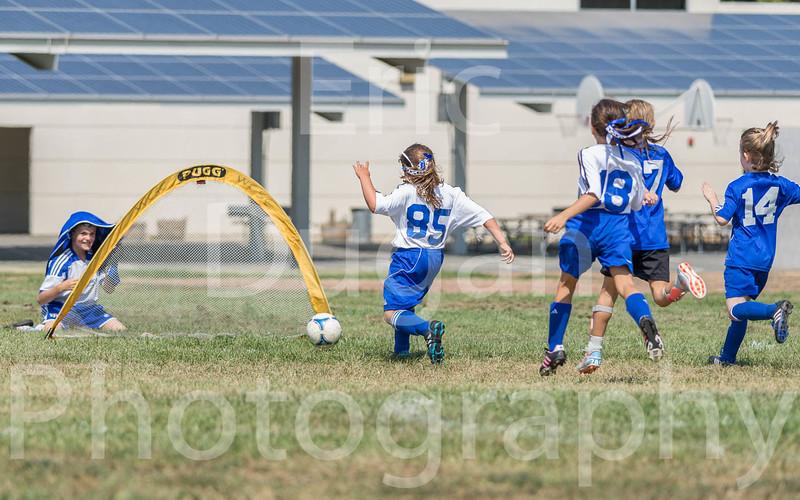 Phoenix vs Cheetah Soccer-167
