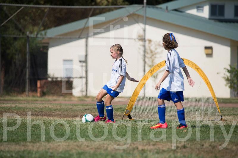Phoenix vs Cheetah Soccer-53