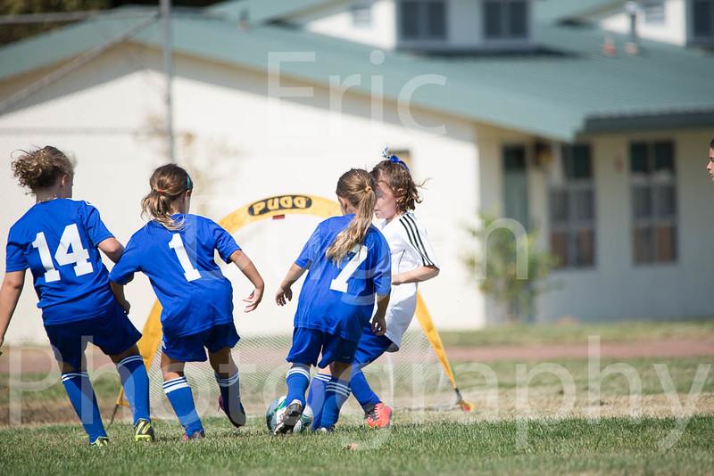 Phoenix vs Cheetah Soccer-18