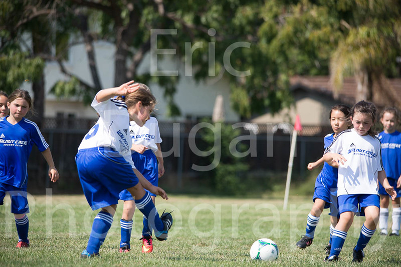 Phoenix vs Cheetah Soccer-91