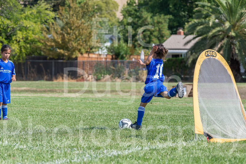 Phoenix vs Cheetah Soccer-5