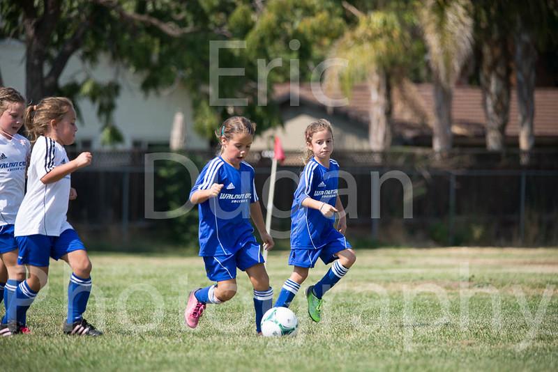 Phoenix vs Cheetah Soccer-174