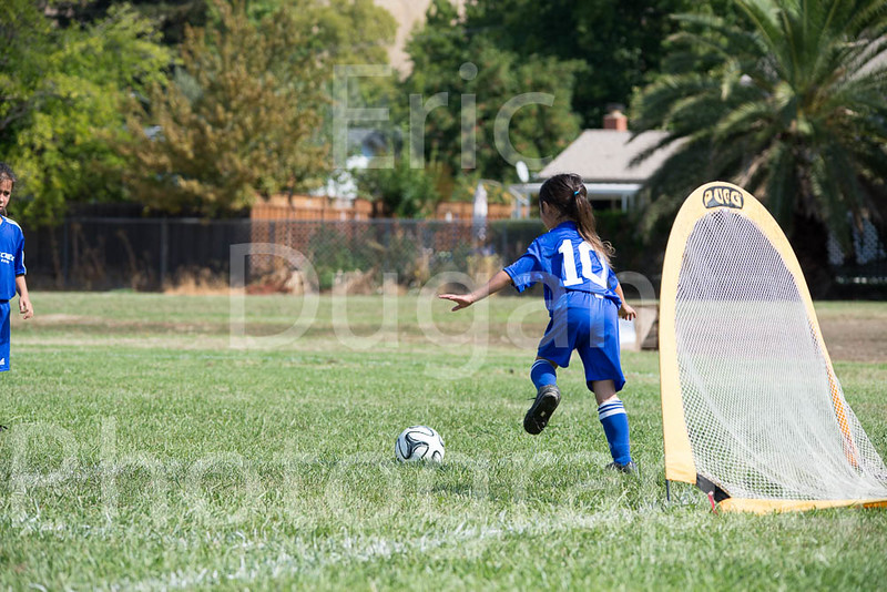 Phoenix vs Cheetah Soccer-4