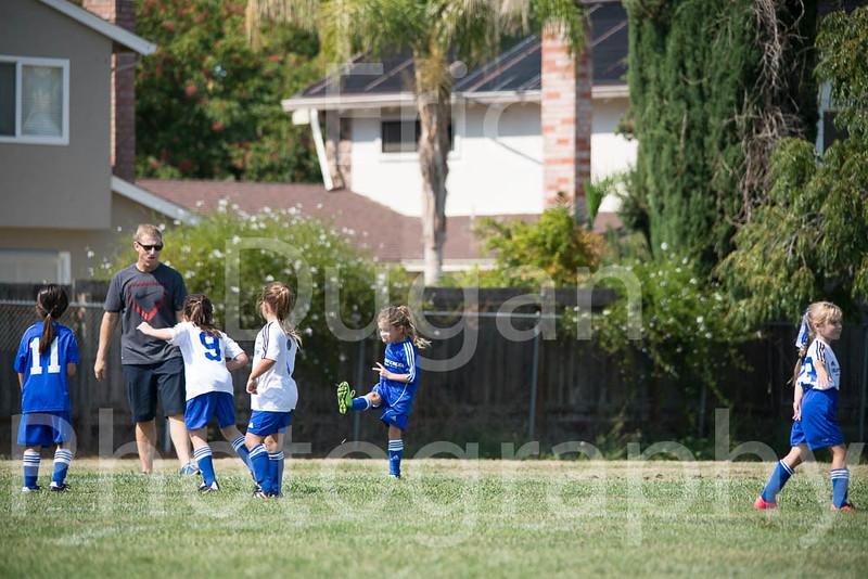 Phoenix vs Cheetah Soccer-99