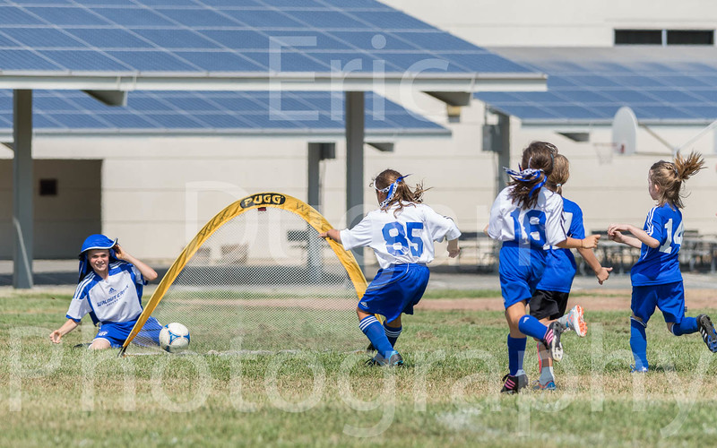 Phoenix vs Cheetah Soccer-169