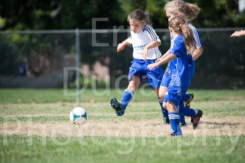 Phoenix vs Cheetah Soccer-14