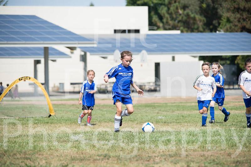 Phoenix vs Cheetah Soccer-211