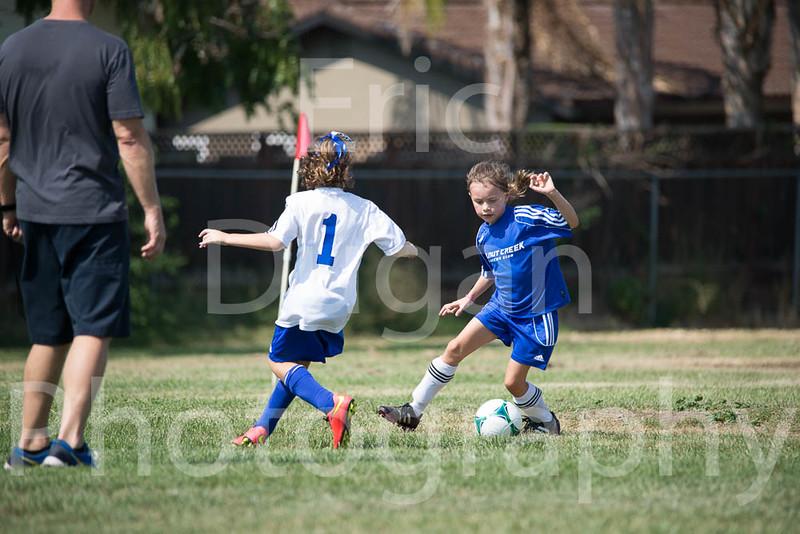 Phoenix vs Cheetah Soccer-130