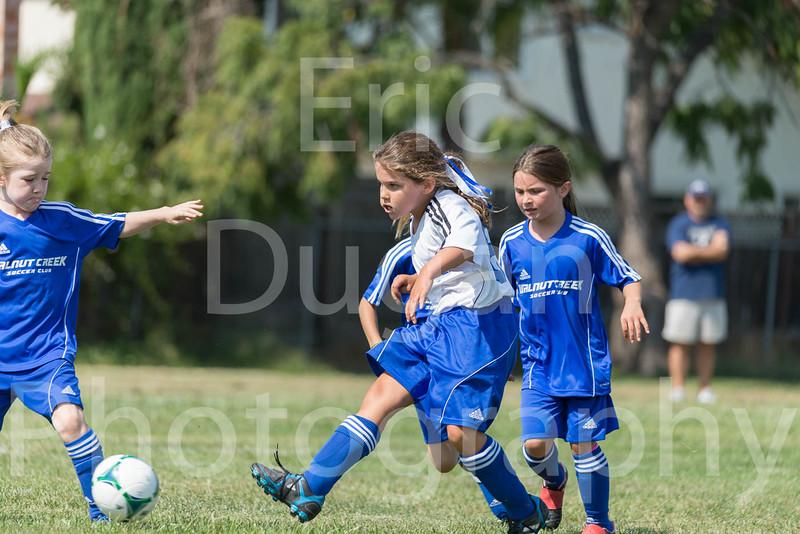 Phoenix vs Cheetah Soccer-37