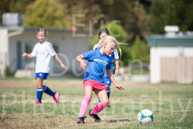 Phoenix vs Cheetah Soccer-68
