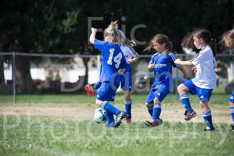 Phoenix vs Cheetah Soccer-25