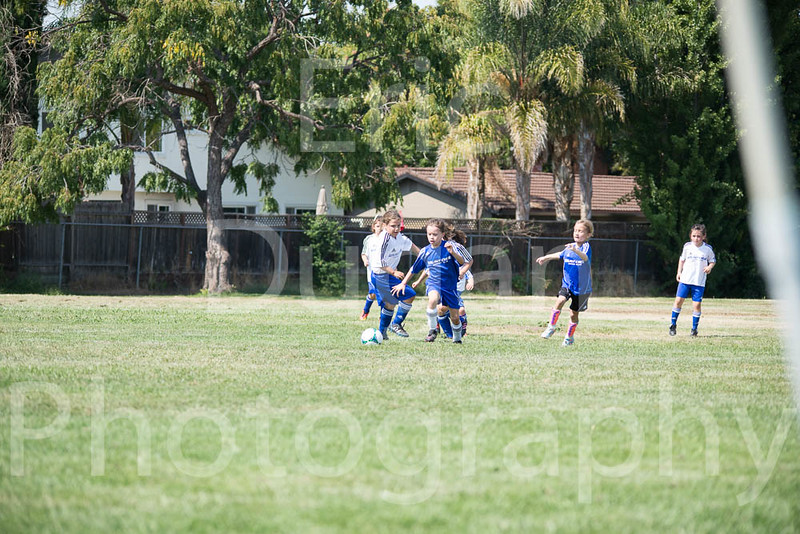 Phoenix vs Cheetah Soccer-139