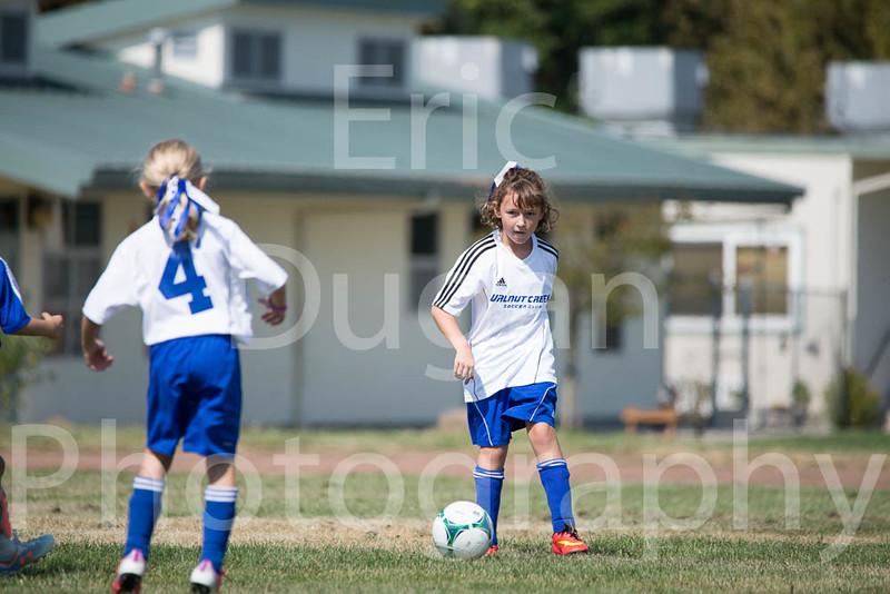 Phoenix vs Cheetah Soccer-28