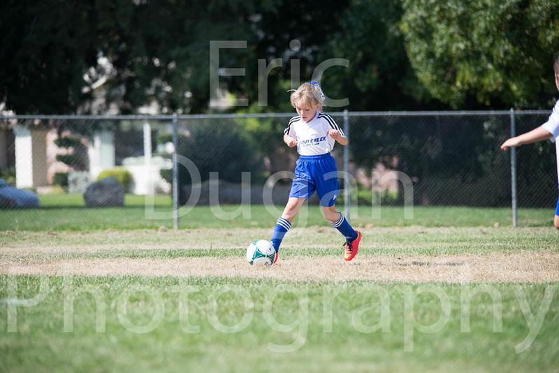 Phoenix vs Cheetah Soccer-24