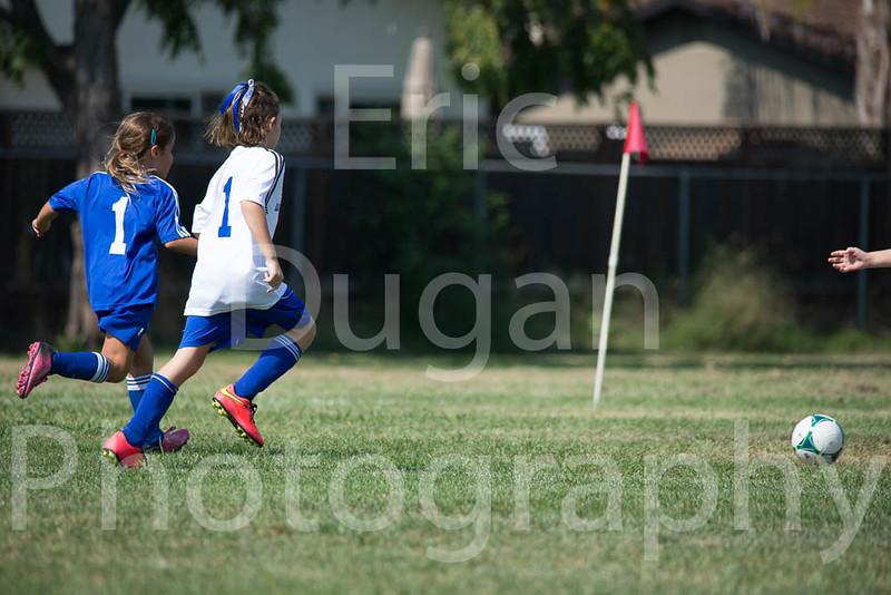 Phoenix vs Cheetah Soccer-47
