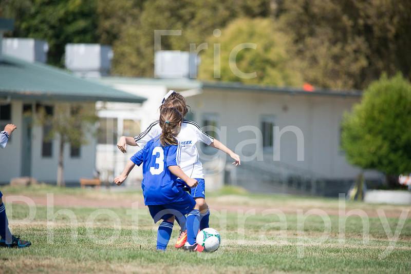 Phoenix vs Cheetah Soccer-17