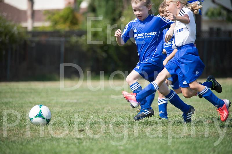 Phoenix vs Cheetah Soccer-30