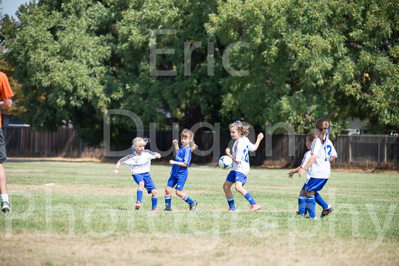 Phoenix vs Cheetah Soccer-40
