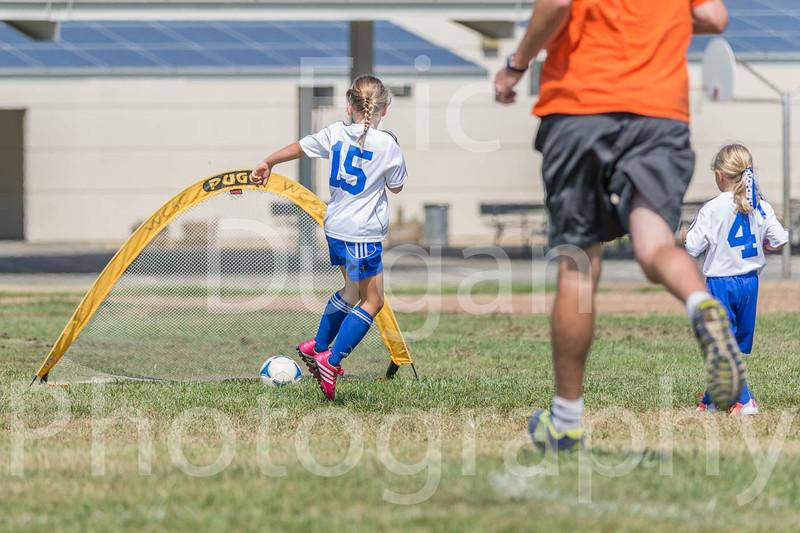 Phoenix vs Cheetah Soccer-144