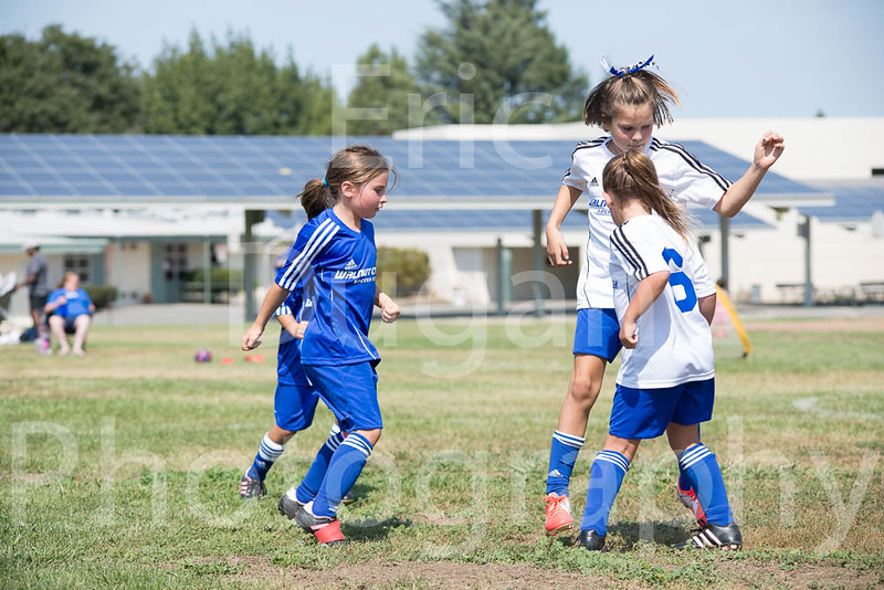 Phoenix vs Cheetah Soccer-155