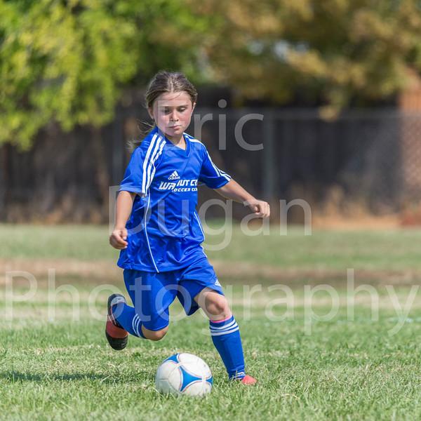 Phoenix vs Cheetah Soccer-161