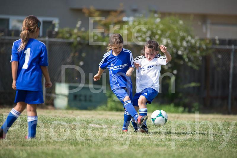 Phoenix vs Cheetah Soccer-70