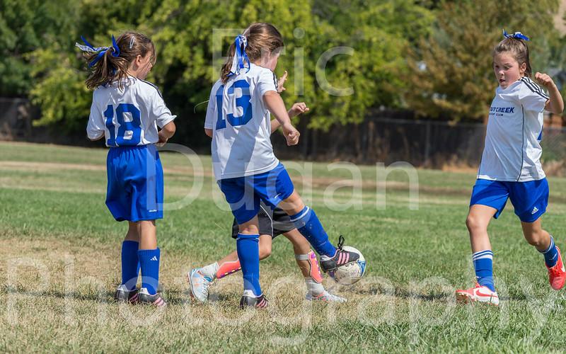 Phoenix vs Cheetah Soccer-183