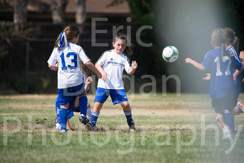 Phoenix vs Cheetah Soccer-136
