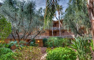 arizona-biltmore-gardens-2-1