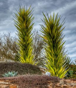 desert-botanical-garden-3-1