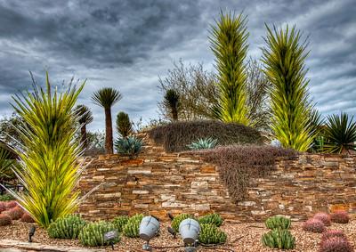 desert-botanical-garden-3-2