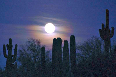 Moonrise on the desert.