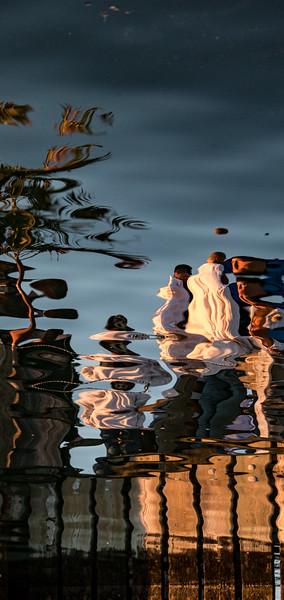 Liquid Life Reflections for Phone Screens
