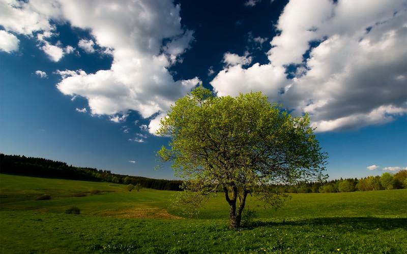 Best_Nature_www.laba.ws
