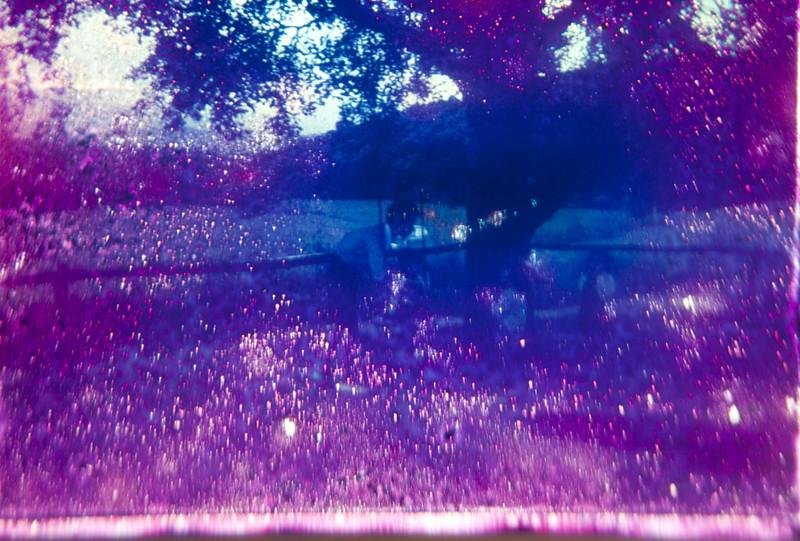 memoria del olvido V, 2014<br /> archival pigment print<br /> 20 x 30 inches ( 50 x 76 cm)