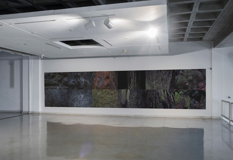 Senescere, 2013-2019<br /> Installation view at Museo de Arte Contemporáneo del Zulia (MacZul)