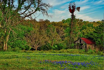Lavaca County Windmill