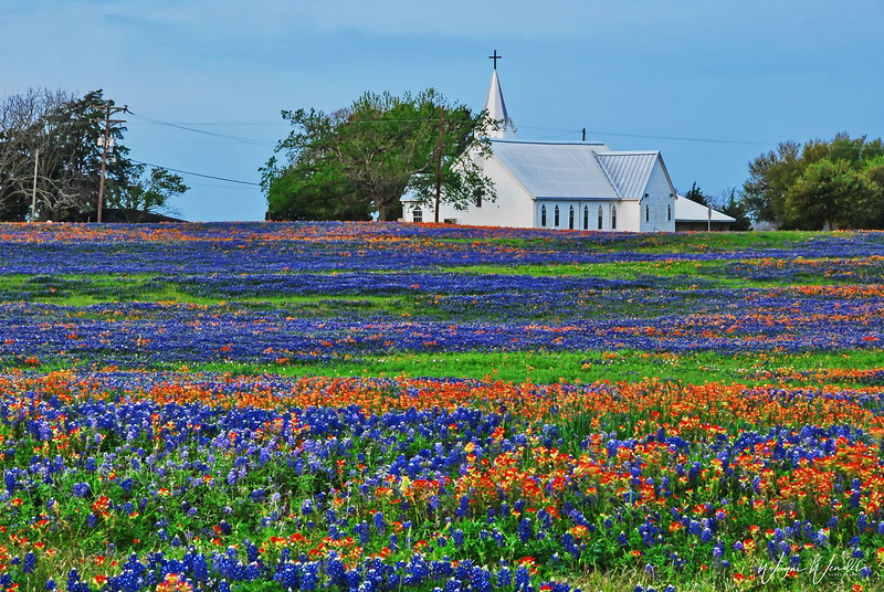 Salem Lutheran Church in Whitehall, Texas