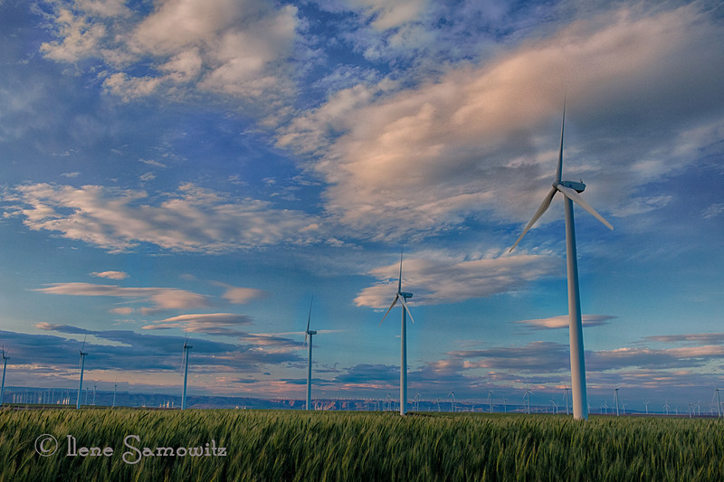 7-24-12 Oregon Wind Farm at the Columbia River Gorge - Still going through my workshop images and loved the sky on this as well as the many wind turbines.
