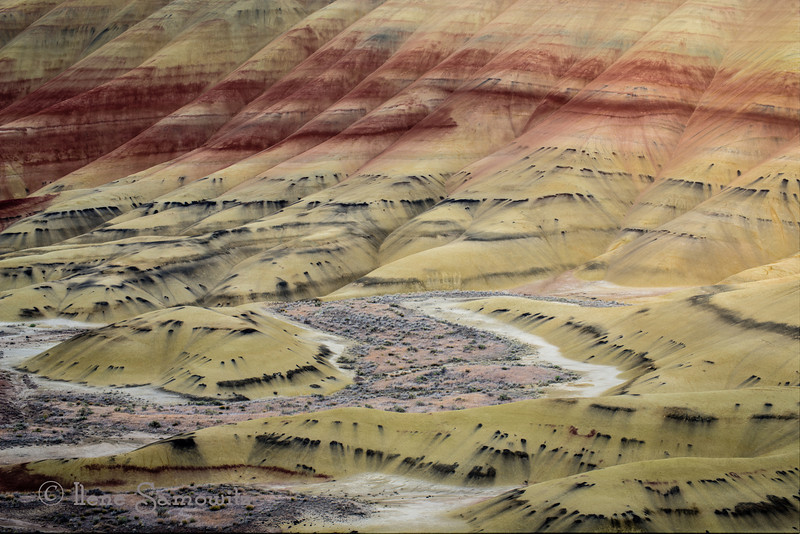 8-23-12 Painted Hills Close Up  <br /> <br /> This was from my first evening light shoot at the Painted Hills.  Light was beautiful and I decided to do some close up and pattern shots of the hills.  This is a five exposure HDR that helped me increase the dynamic range.  I processed this in Photomatix Pro using the photographic preset as the starting point.  All adjustments after the tonemapping were done in Lightroom 4.  <br /> <br /> Thanks for the critiques and comments.  I too am finding them useful.