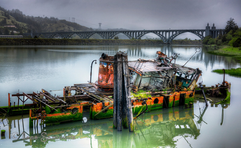 Mary D Hume<br /> Gold Beach, Oregon<br /> This is one interesting place to photograph in Gold Beach.  This time when I visited the Rogue River was very calm allowing for great reflections.  This area is close to the mouth of the river.  The day was overcast allowing for some interesting saturation of colors.