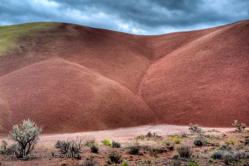Details from the Cove, Painted Hills, Oregon 6-21-12<br /> <br /> This is another area from the Painted Hills where there is a boardwalk that gets you very close into some hills where you can observe the textures and details of this wondrous place.