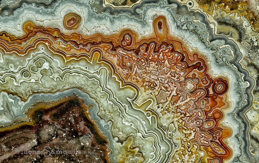 10-15-12 Crazy Lace Agate .  I used my Nikon 70-180 Macro at 180 which is a .5 lifesize and then used 2 extension tubes.  I would guess that I was probably close to a little above lifesize.  <br /> <br /> Critiques Welcome.