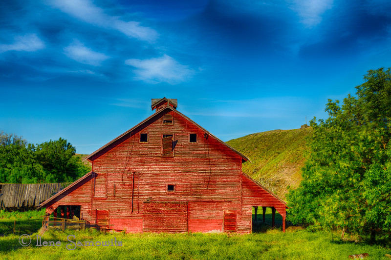7-25-12 Red Barn near Dufur, Columbia River Gorge, Oregon