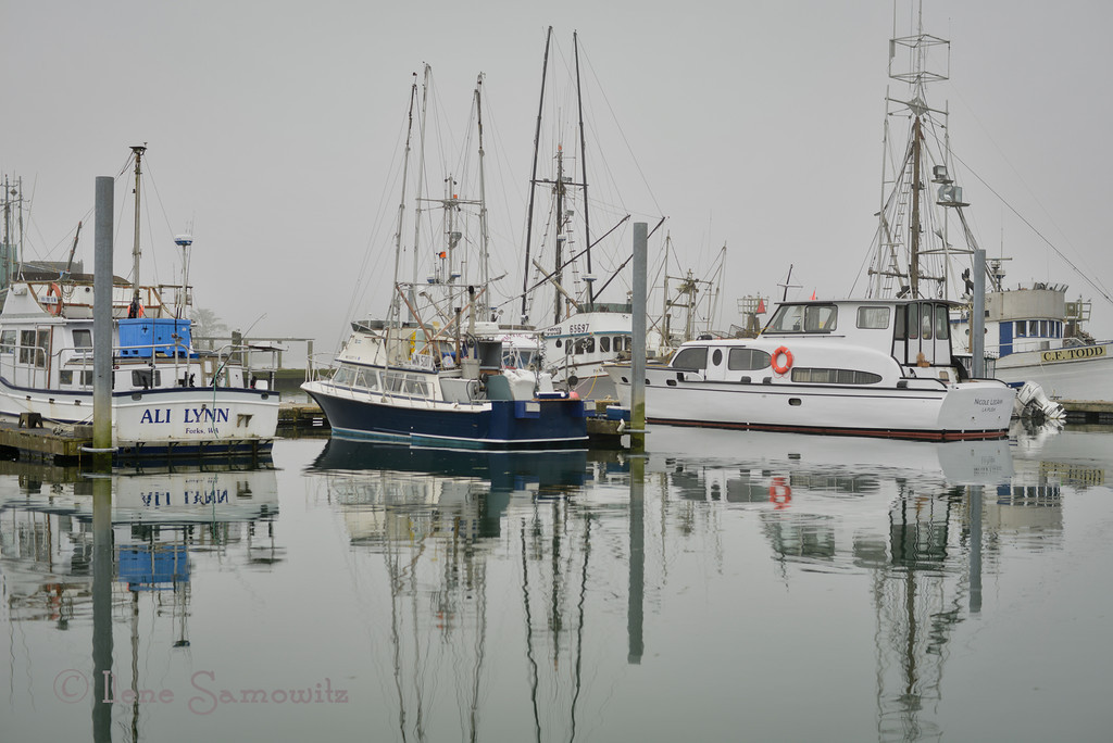 8-13 Morning Fog at the Quileute Marina, La Push, Washington.  Photographing harbors and marinas in the fog are always so much fun.