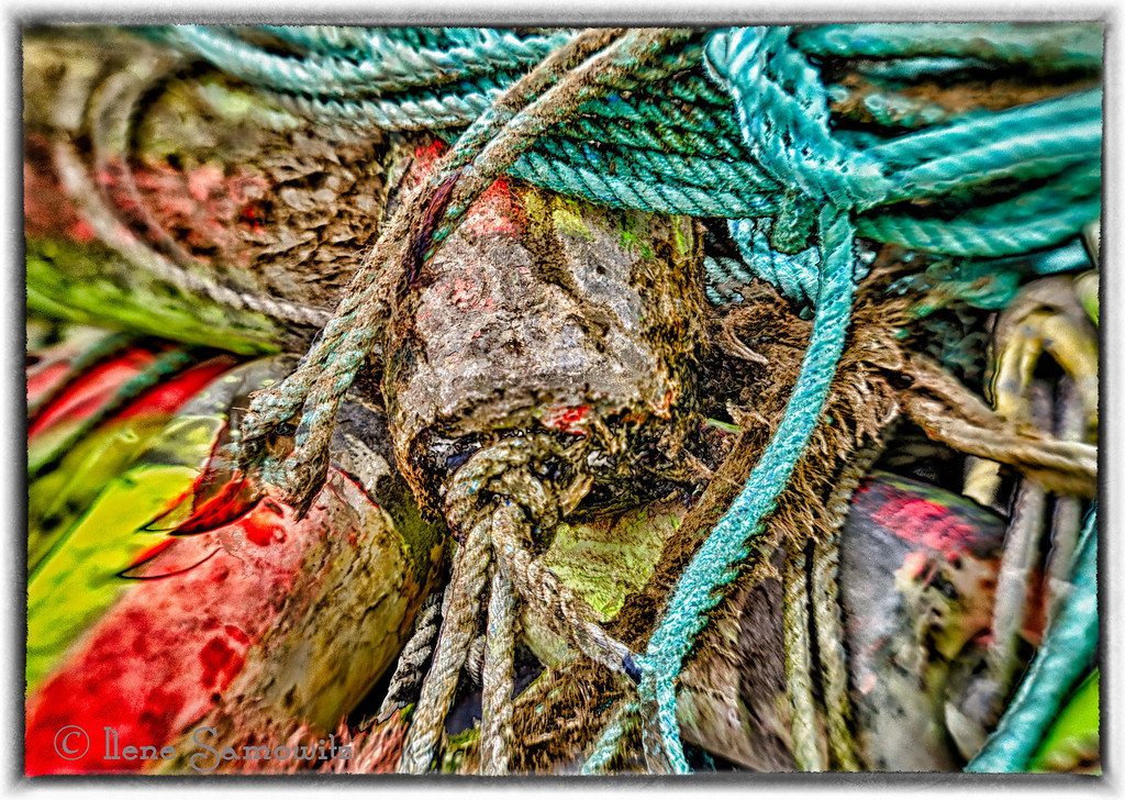 Garibaldi Fishing Floats and Ropes