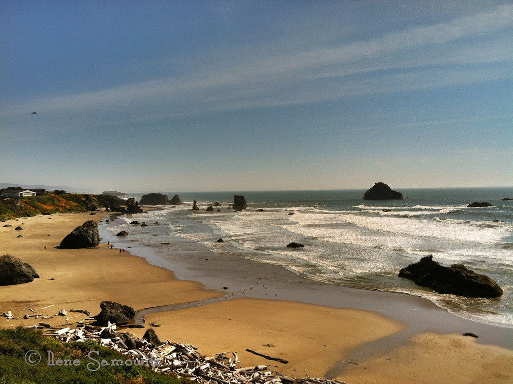 Another iPhone 4 processed with the iPad.  Bandon, Oregon.